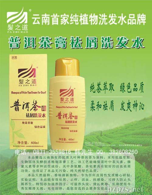 普洱茶膏祛屑止痒洗发水